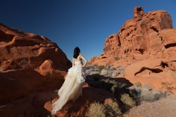 Bride standing in a wedding dress on the red rocks of the Valley of Fire State Park, Nevada, USA near Las Vegas