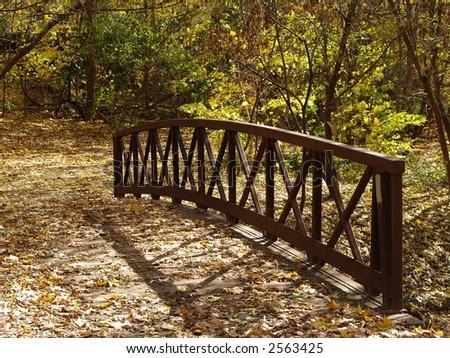 bridg in the fall
