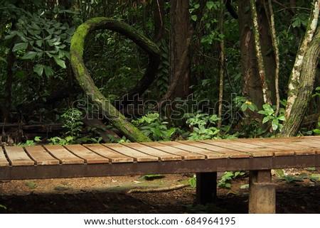 Bridge and curve #684964195