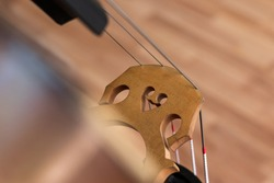 Bridge and strings on a contrabass. Wooden background