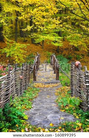 Bridge in bright autumn forest. Natural composition