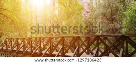 Bridge in canyon Ihlara valleys and plains at sunrise, Cappadocia, Turkey #1297186423
