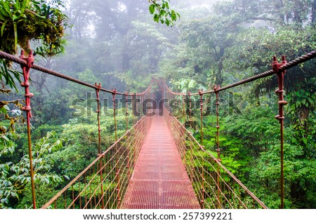 Shutterstock Bridge in Rainforest - Costa Rica - Monteverde