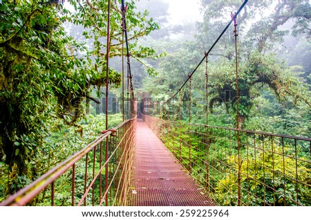 Bridge in Rainforest Costa Rica Monteverde