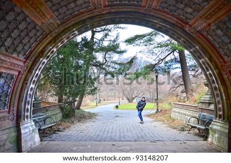 Bridge in The Prospect Park , Brooklyn, USA