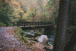Bridge over Deep Creek in Smoky Mountains National Park, North Carolina