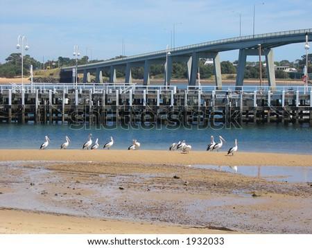 Bridge to Philip island (Philip island, Victoria, Australia)