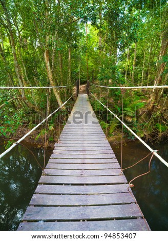 Bridge to the jungle,Khao Yai national park,Thailand - stock photo