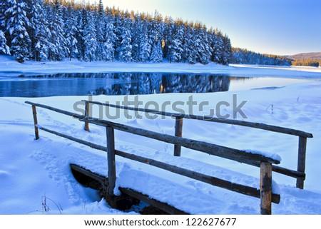 bridge to the lake