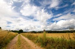 bridleway through an english hay field