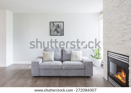 Bright and clean interior design of a luxury living room with hardwood floors, fireplace and sofa.