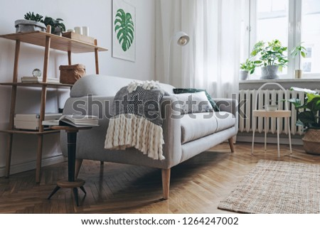 Bright and stylish  scandinavian room with design sofa, poster, plants, bookstand, coffee table, cozy blanket  and carpet. White background walls, brown wooden parquet and modern lamp.  #1264247002