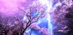 Bright autumn forest and waterfall at sunrise, creative purple and violet colours in season specific. Long exposure. Soft focus on purple forest.