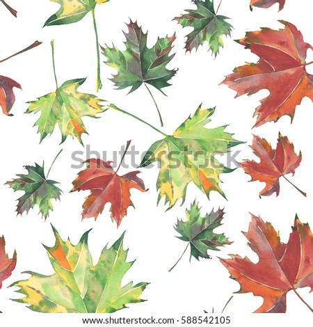 Bright beautiful green yellow red brown leaves autumn maple and pattern watercolor hand illustration