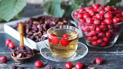 Bright berries of fresh hawthorn with dried berries and tea on a wooden background.Alternative folk medicine using hawthorn.