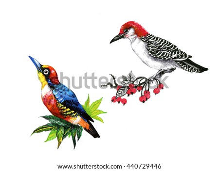 Bright birds on branches with flowers ink hand drawn illustration