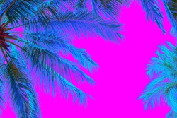 Bright blue holographic neon colored palm trees in abstract style on pink background. Night club beach party flyer template. Retro style creative summer design concept. Open composition. Copy space