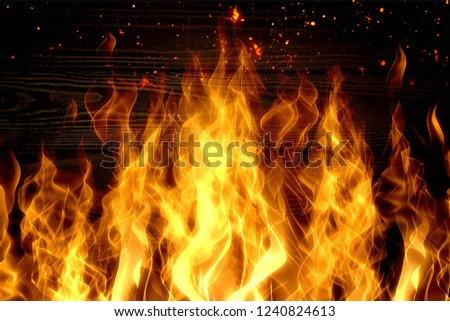 Bright burning wood in a camping on a black background #1240824613