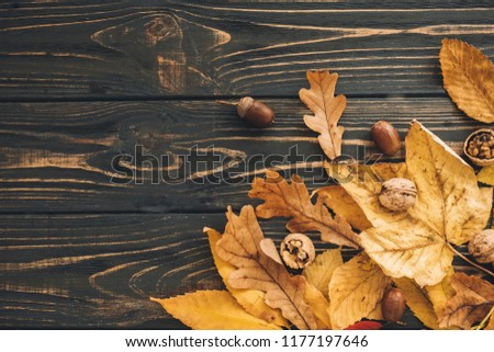 Bright colorful autumn leaves with acorns and nuts on rustic wooden background, flat lay. Fall image. Space for text. Hello Autumn. Happy Thanksgiving. Seasons greetings