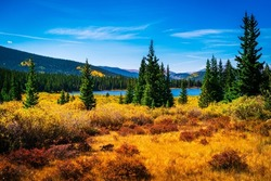 Bright Colorful Fall Autumn Foliage along Echo Lake shores with Lush Pine Trees and gorgeous blue water lake surrounded by Colorado Rocky Mountains near Mount Evans