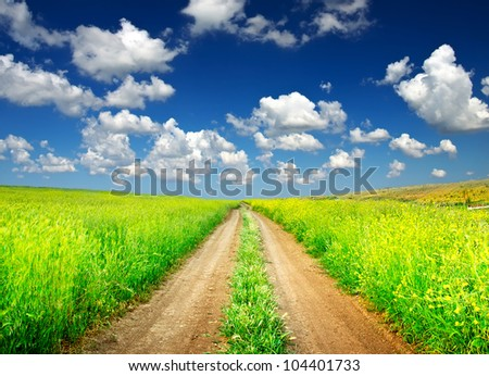 Bright field and the rural road. Bright sky and clouds