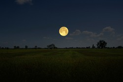 Bright full moon in blue sky over gold field