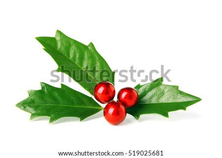 Bright green Christmas holly with red berries isolated on white #519025681