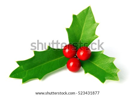 Bright green Christmas holly with red berries isolated on white #523431877
