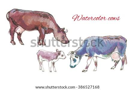 bright hand drawn watercolor farm animals cows and calf watercolor