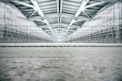 Bright industrial interior tunnel with concrete floor and metal roof
