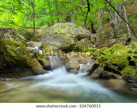 Bright jungle with fast river. Natural landscape