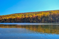 Bright light and Fall colors on an autumn day by the lake and forrest