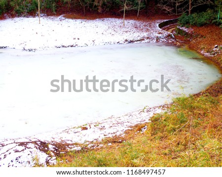 bright light blue white wide icy water pond lake in the morning with dry red yellow green grass shore land, white melting snow covering, with dark forest tree in the background #1168497457