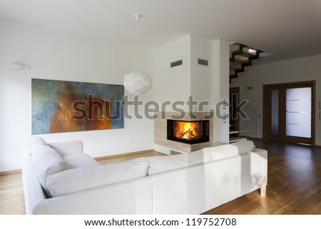 Bright living room with fireplace, stylish house