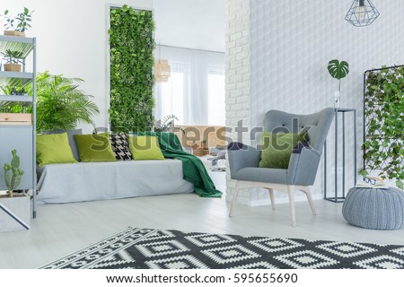 Bright living room with sofa, armchair, pouf and green plants #595655690