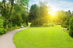 Bright morning sun illuminates beautiful garden with large meadow and walking path.