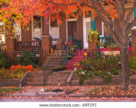 Bright orange leaves hang in front of rowhouse porches in autumn.