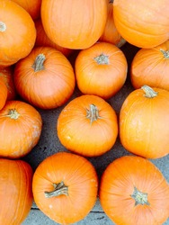 Bright orange pumpkins are seen in a pile, nice for a background
