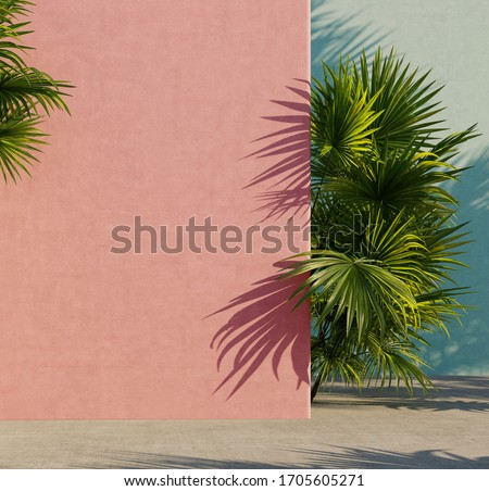Bright painted pink and turquoise  wall with green tropical leaves, sunlight with shadows. Summer, spring background. 3d rendering.