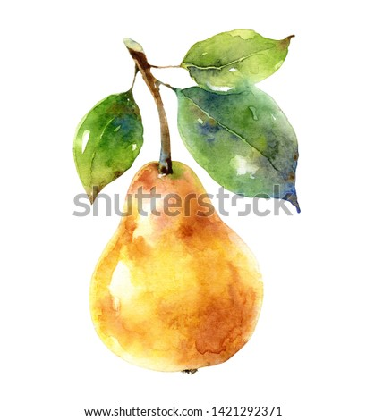 Bright picturesque yellow pear isolated on white background. Design element. Watercolor illustration