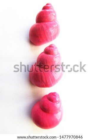 Bright pink bright twisted glossy snail shells lying in a row objects on an isolated white background.