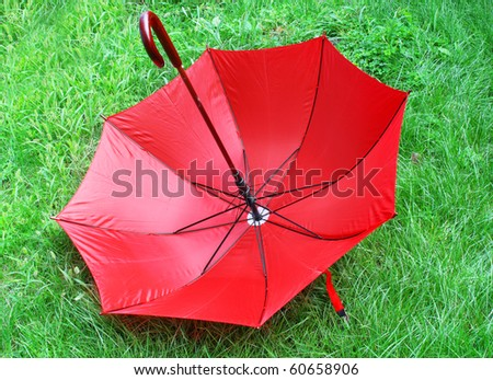 bright red umbrella  lying on a green grass