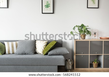 Bright room interior with sofa and rack