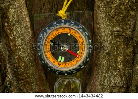 bright round compass hanging on the trunk of a forest tree close up concept of sports orientation and hiking #1443434462