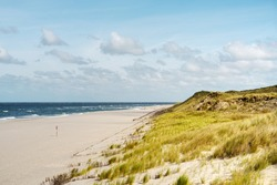 Bright sandy beach and grassy dunes by the blue sea. Summer landscape panorama on the island of Sylt, North Frisian Islands, Schleswig-Holstein, Germany. Copy space.