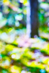 Bright saturated abstract natural background with glare and bokeh effect. A series of photos with a large size of 60 megapixels.Vertical frame.