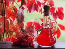 Bright still life with useful seasonal tincture and fruit viburnum. Drink in a glass decanter and a mug, red berries of the Viburnum opulus plant in the autumn garden.