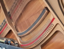 Bright structure  Mid-range of an upright piano