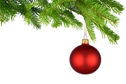 Bright studio shot of an isolated red Christmas bauble hanging from fresh green fir twigs