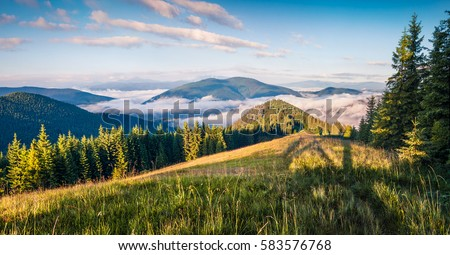 Bright summer morning in the Carpathian mountains. Picturesque outdoor scene on the mountain valley in June, Ukraine, Tatariv village location, Europe. Artistic style post processed photo.